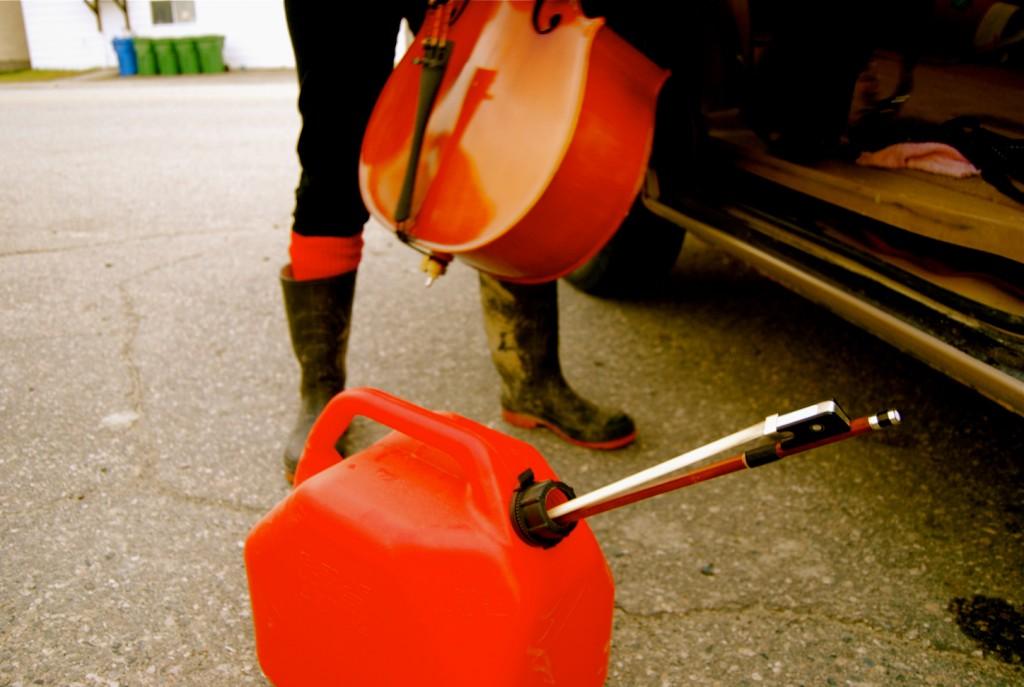 caniss-van-cello